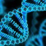 Científicos mejoran la capacidad del ADN para almacenar información