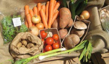 Latinoamérica, la región donde más crece la inseguridad alimentaria por COVID-19