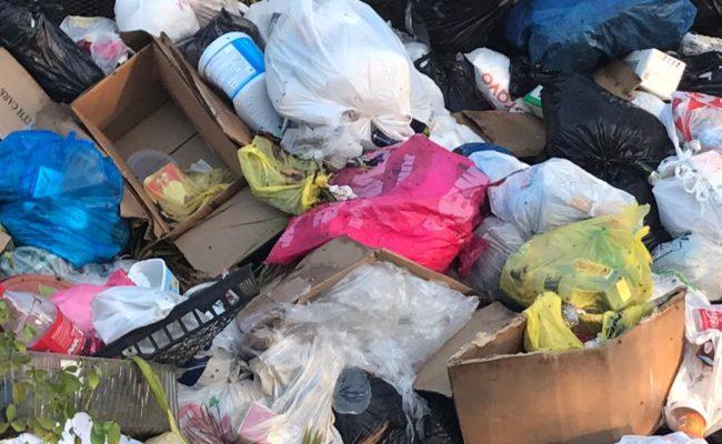 Denuncian gran cúmulo de basura afecta residentes en el Carmen Renata III de Pantoja