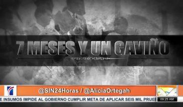 """Alfonso Rodríguez anuncia el estreno de """"7 meses y un Gaviño"""""""