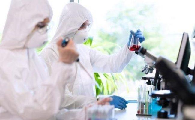 EE.UU. inicia pruebas de prometedor tratamiento con anticuerpos de COVID-19