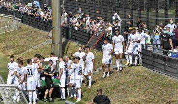 Sin cerveza, Alemania permitiría presencia de hinchas en estadios