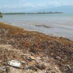 Tras lluvias litoral marino de Barahona luce altamente contaminado