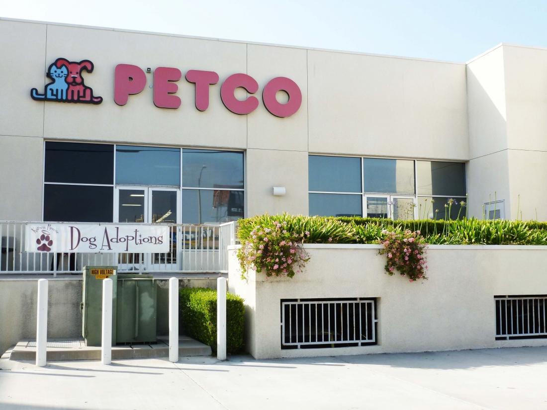 Petco Westwood | Sinanian Development, Inc