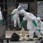 China confirma primeiro contágio humano de cepa da gripe aviária - SINDESEP