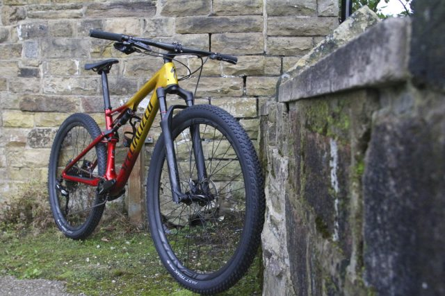 specialized epic expert carbon sid brain