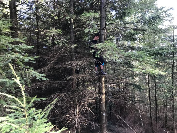 hamsterley forest bike test issue 119