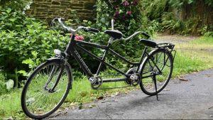Kuvassa on tamdem-polkupyörä hiekkatiellä nurmikon ja pensasaidan vieressä.