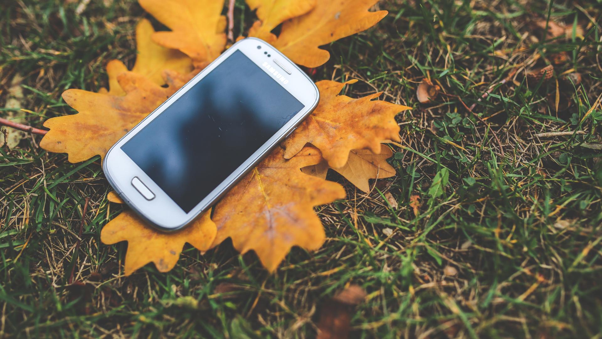 Kuvituskuva, älypuhelin syksyisellä nurmikolla