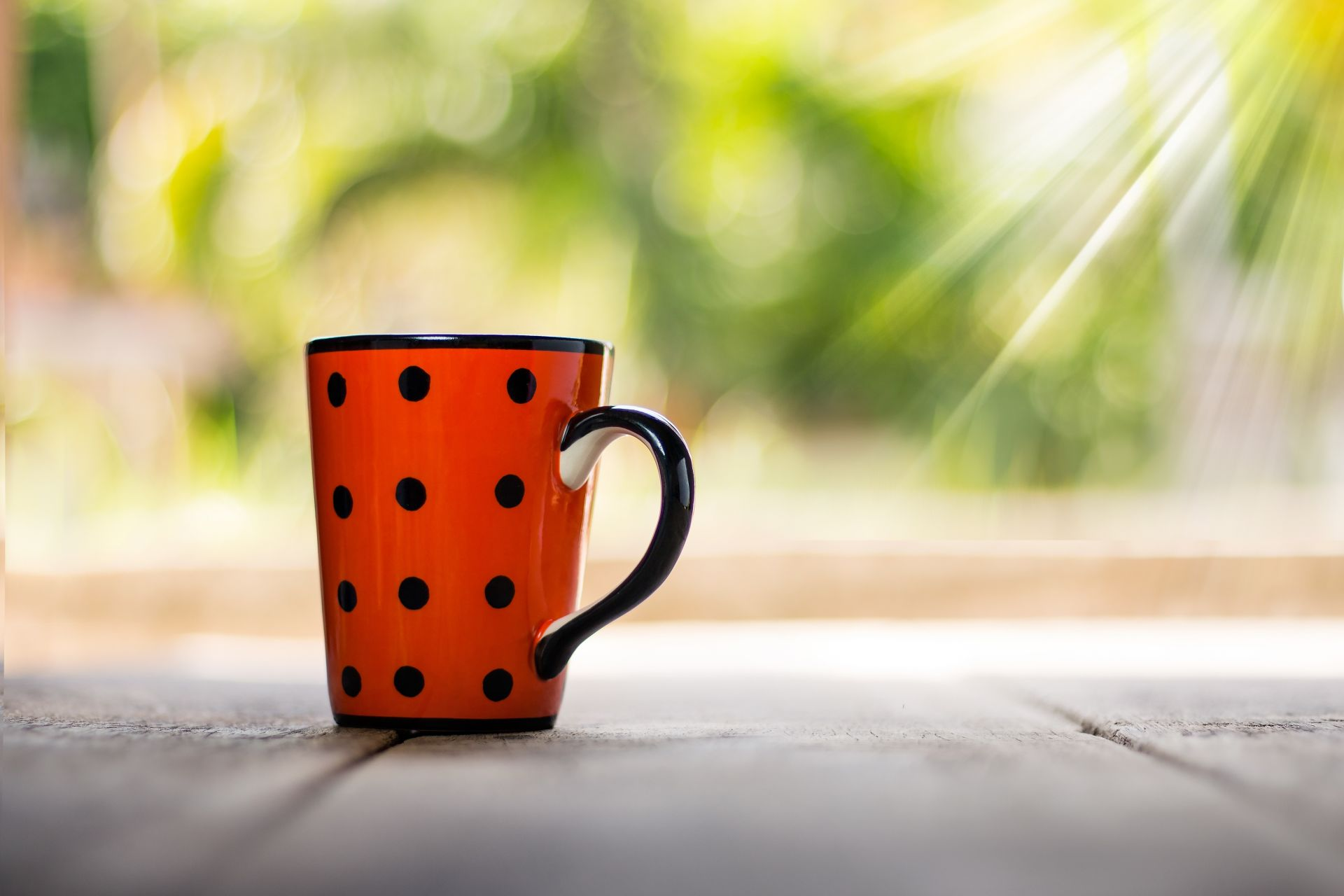 Kahvikuppi kylpee auringon valossa.