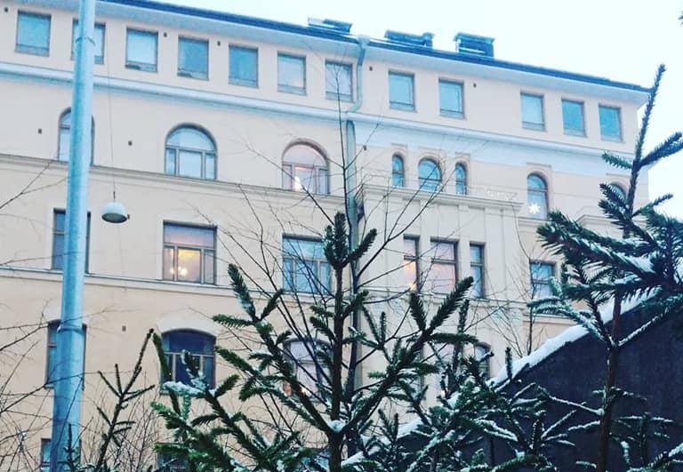 Joulukuusen latvoja, taustalal vaalean vanhan kerrostalon seinä.