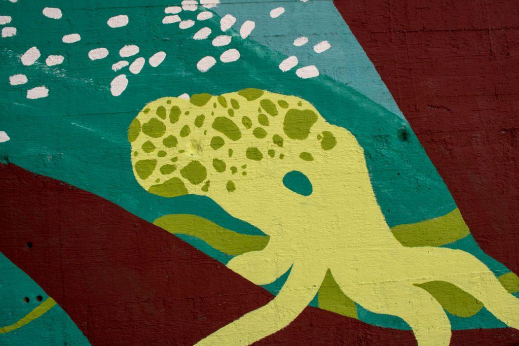 Betoniseinään maalattu keltainen mustekala.