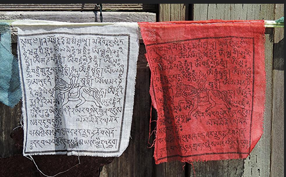 Narulla roikkuvat kankaat, joissa Tigrinjan kielistä tekstiä