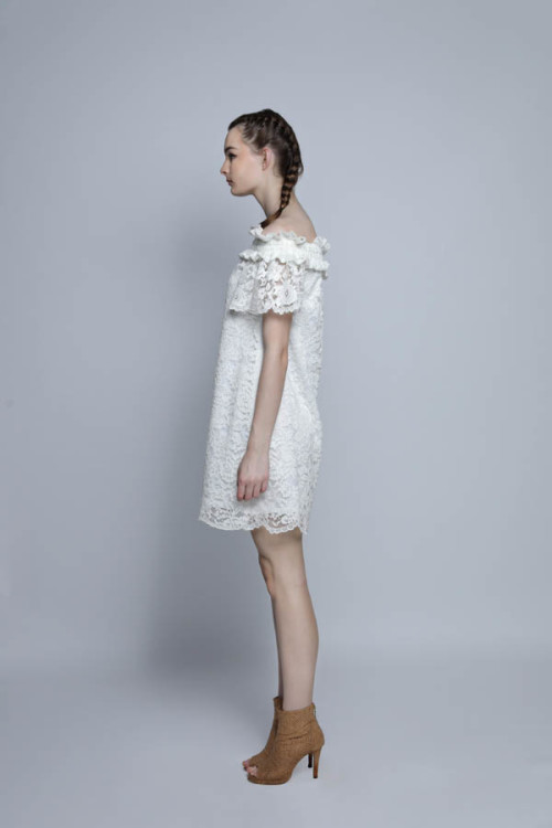 Brielly Lace Dress