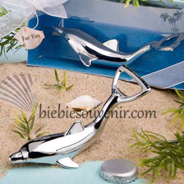 3D dolphin opener image