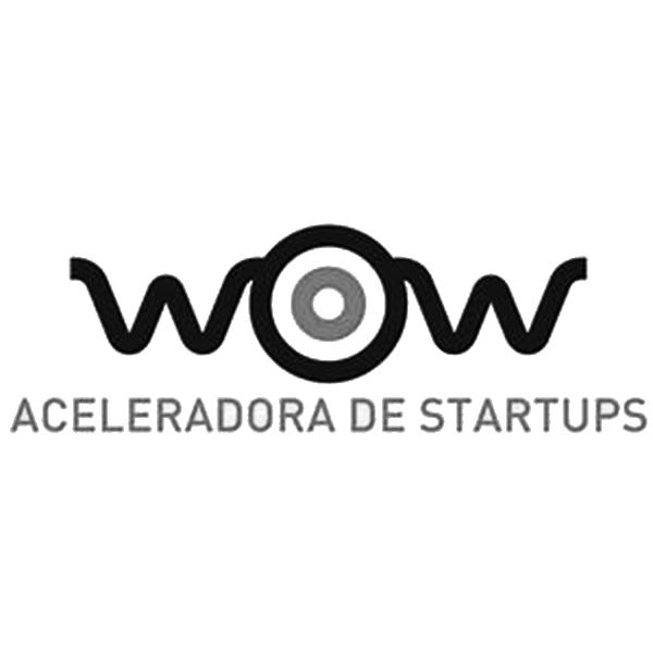 Wow Aceleradora de Startups