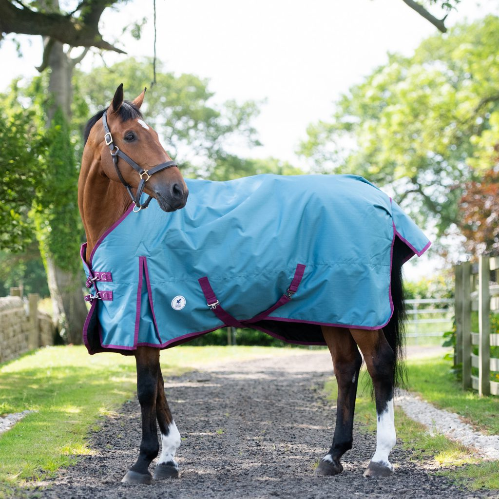 Derby House Pro Autumn/Winter Rugs