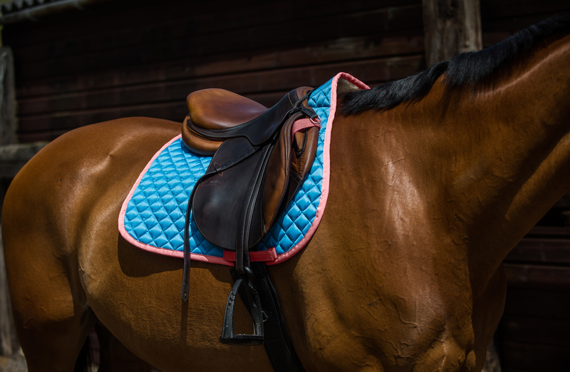 derby-house-frechie-saddle-pad