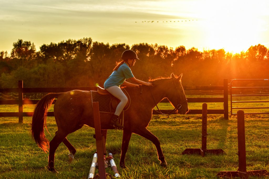 7 Typical Equestrian Dads