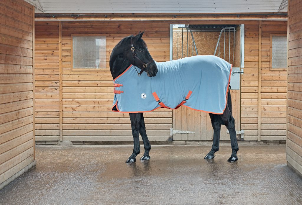 New spring summer Derby House Horse Rugs - Our top picks