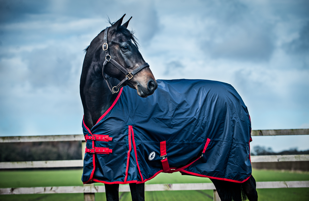 Why We Love The New Derby House Rug Range Journal Rideaway