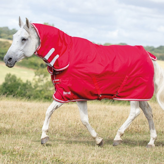 Choosing the perfect horse rug this spring