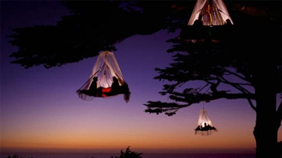 Treetop Camping is the new fashion