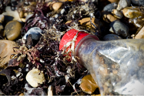 Good news for our Oceans - Plastic is being banned!