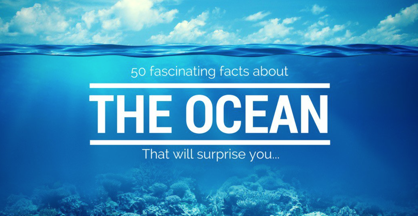 50 Fascinating Facts About Our Oceans