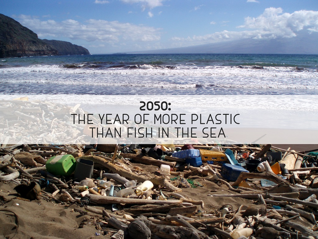 2050: The year of more plastic than fish in the sea