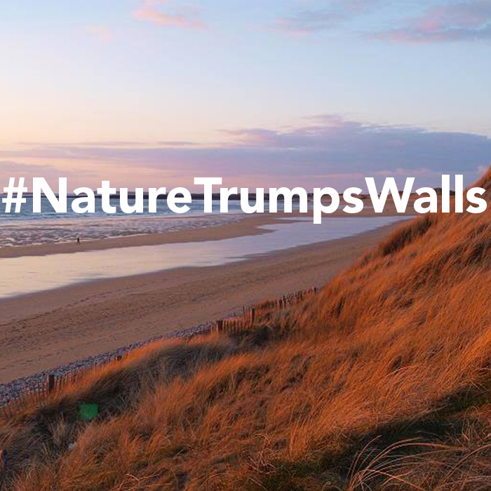 We need more walls to Trump the …. Ocean!