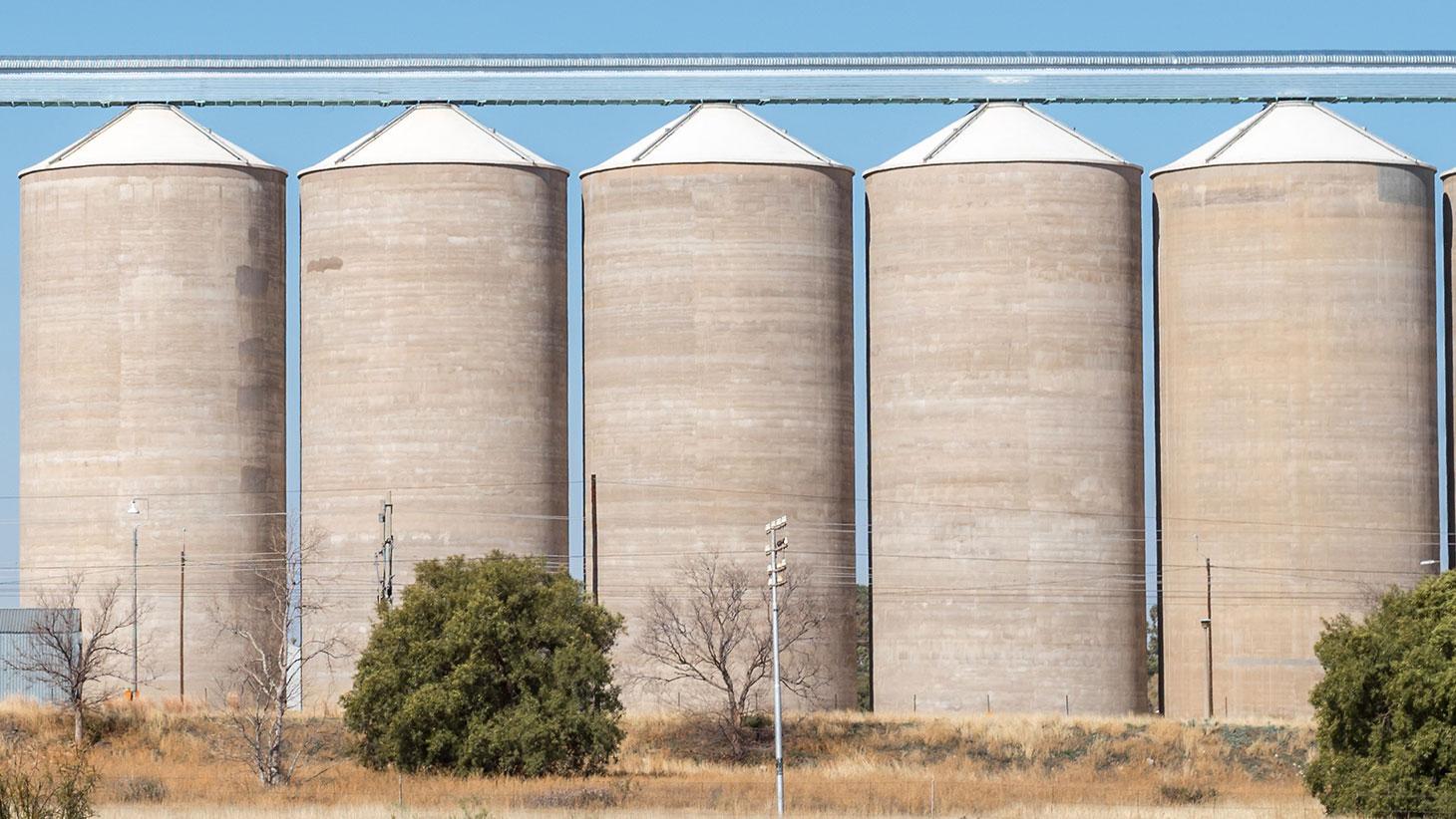Modelado de silos de concreto para el almacenamiento de soja