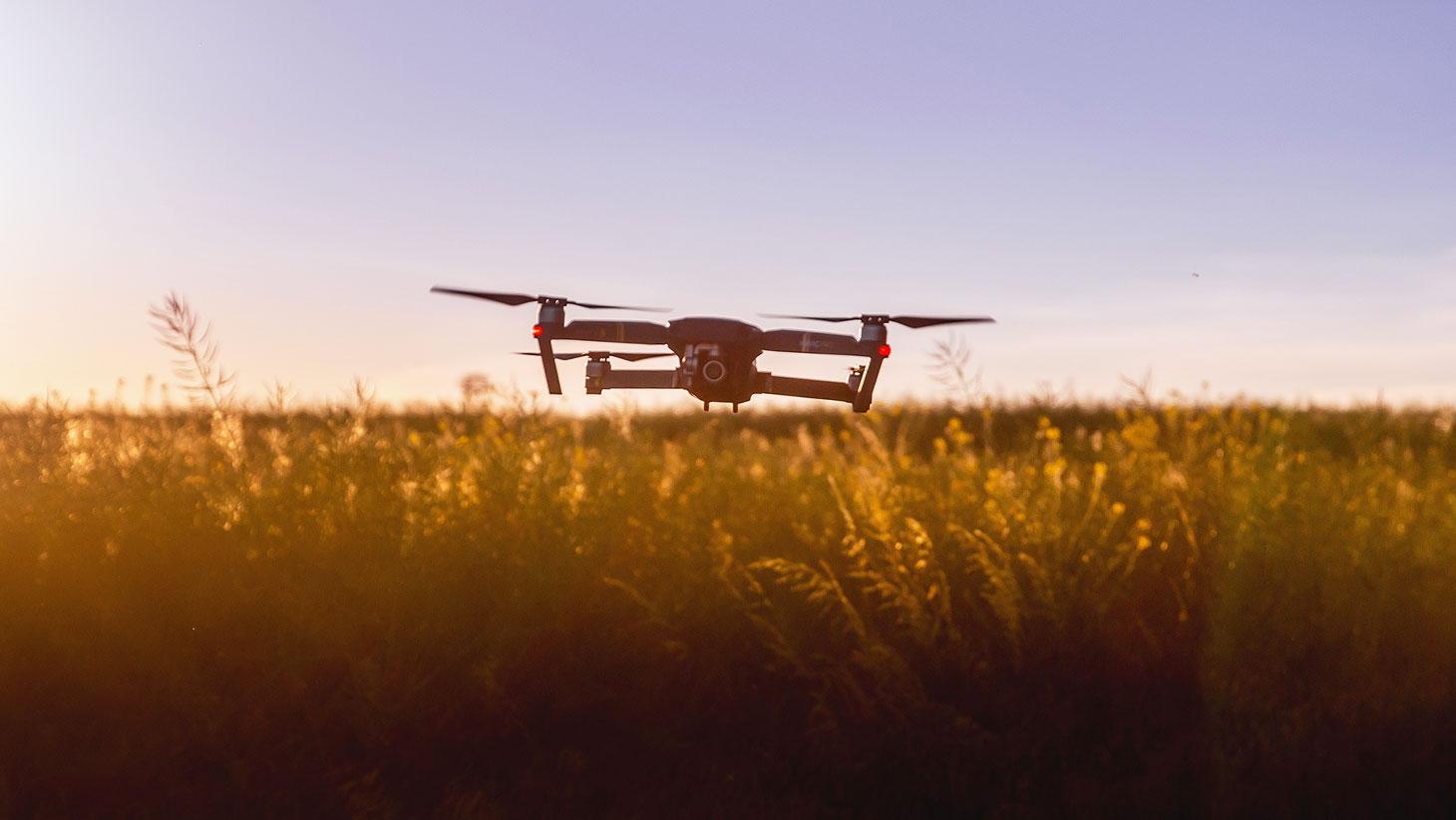 A Agricultura do Futuro