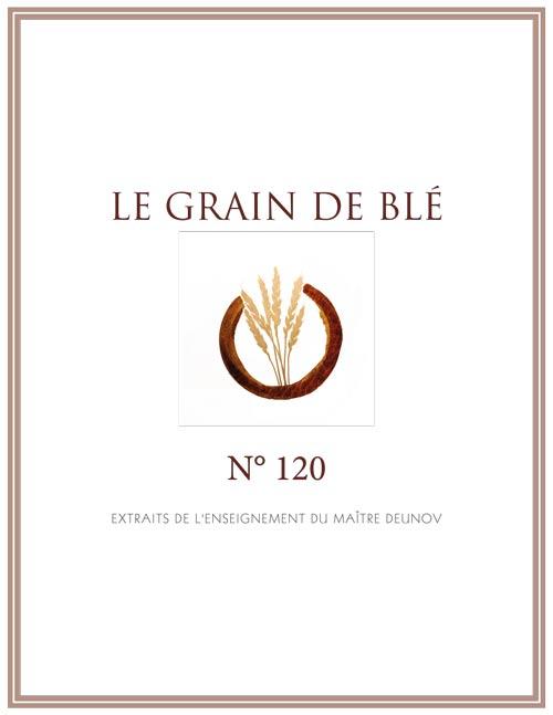 le grain de blé N°120