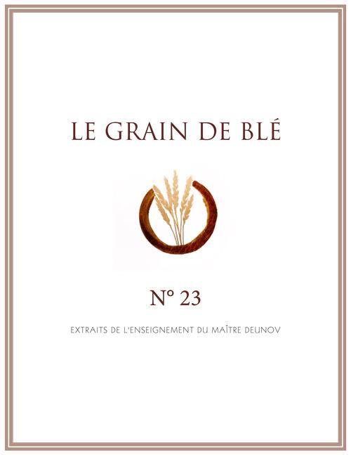 le grain de blé N°23