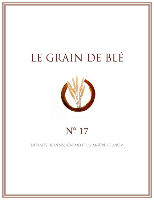le grain de blé N°17