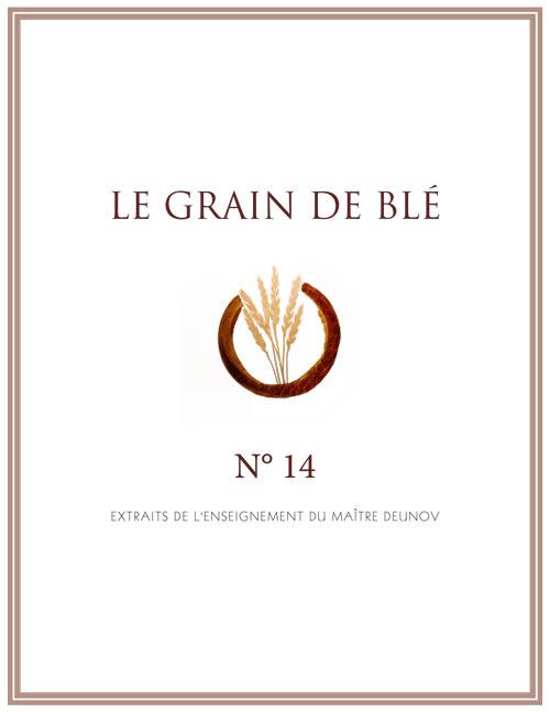 le grain de blé N°14