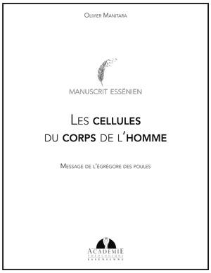 Les cellules du corps de l'homme - Message de l'égrégore des poules
