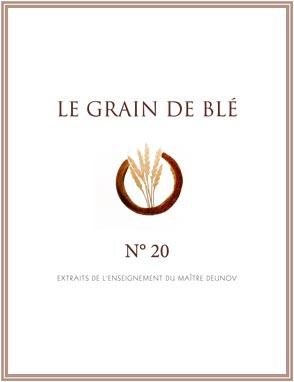 le grain de blé N° 20