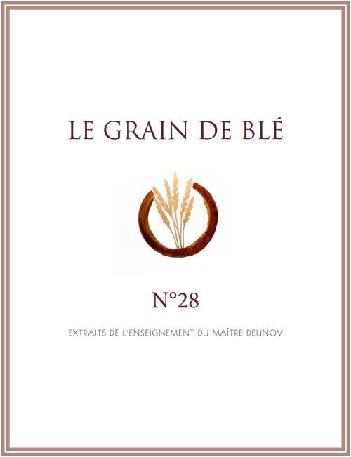 le grain de blé N° 28