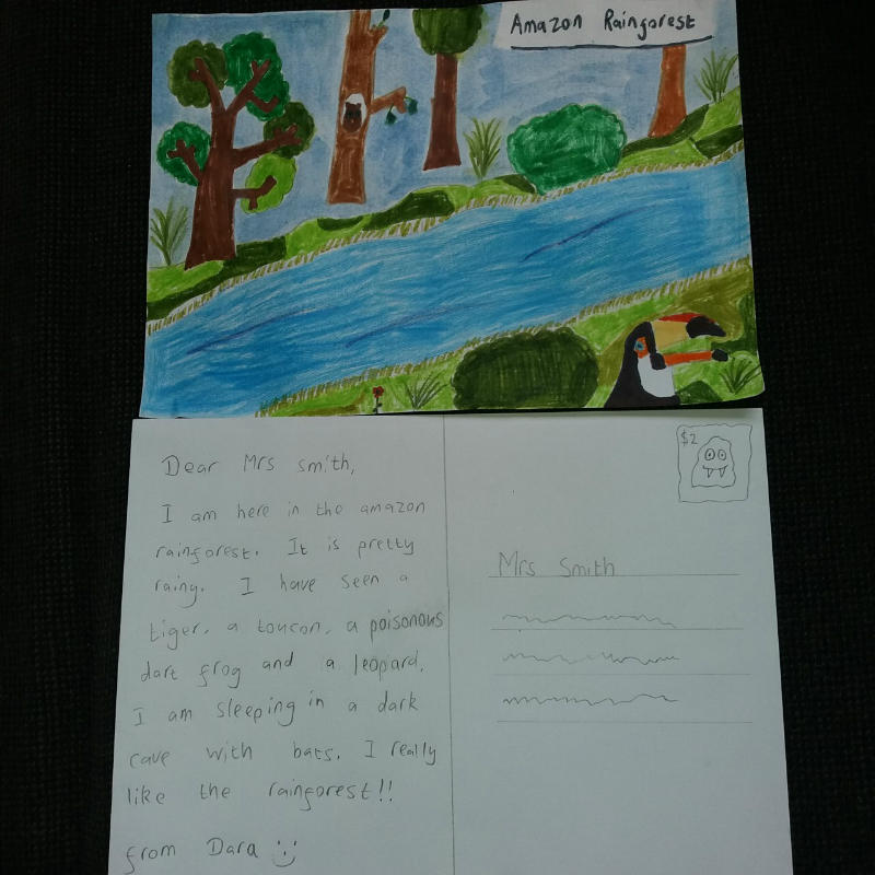 Dara's Amazon Rainforest postcard, lovely artwork Dara.