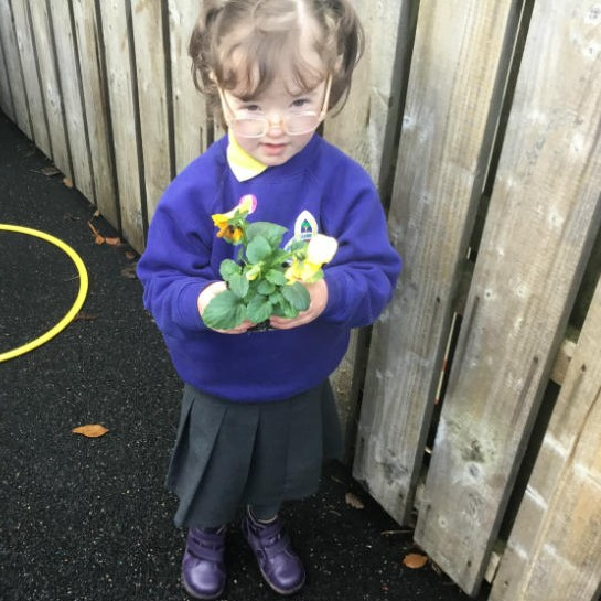 Planting flowers in P1