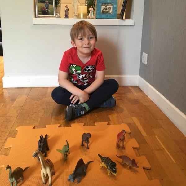 Jude's impressive dinosaur collection