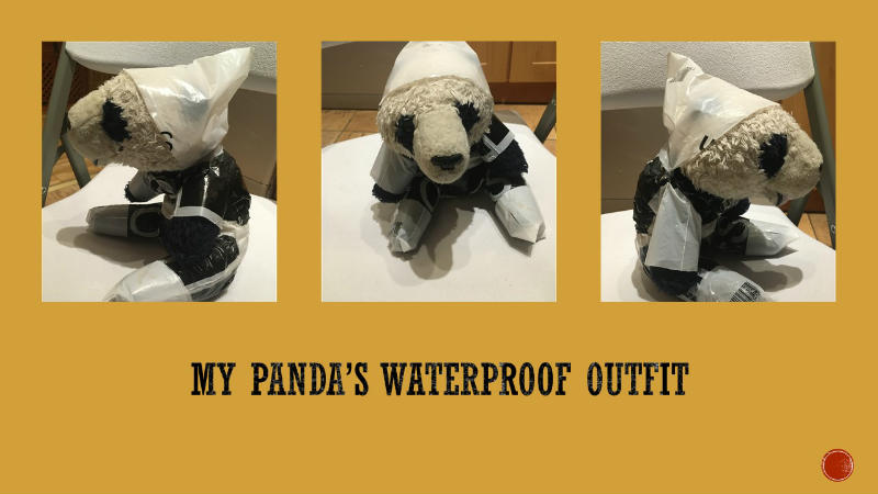 Filip Bober made a waterproof outfit for his panda.
