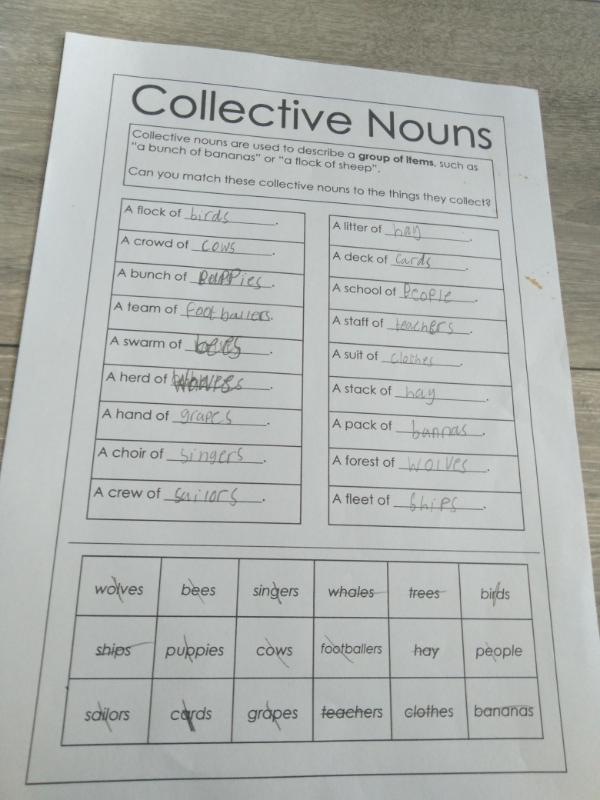 Exploring collective nouns!