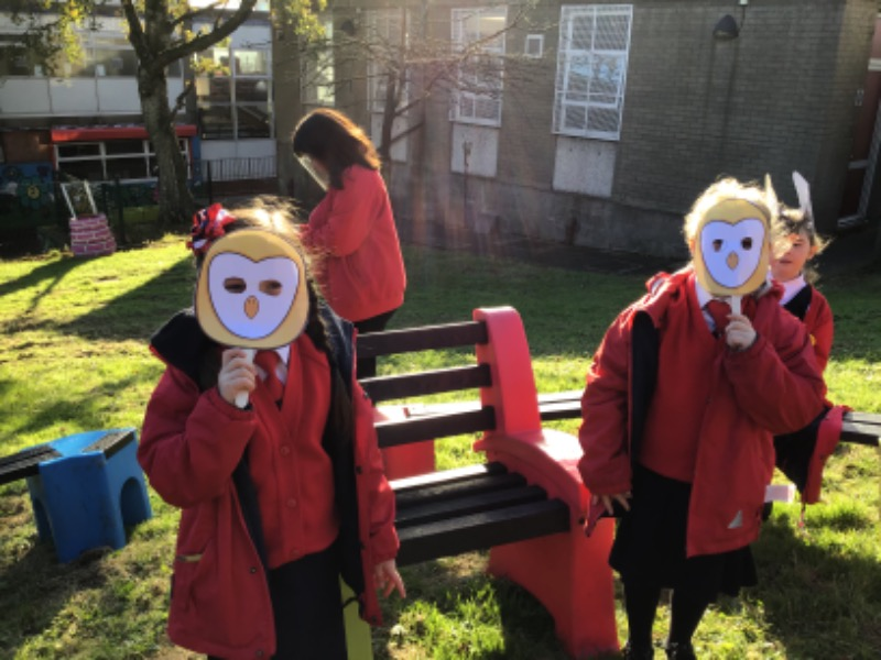 The Owls chaired the meeting.