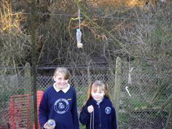 We made some bird feeders