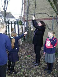 We hung our feeders all over the school grounds