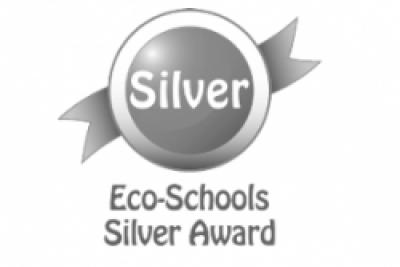 Silver Eco Award