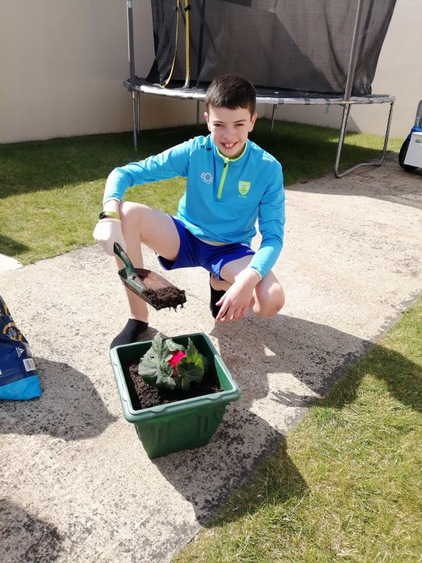 James - helping to plant flowers in his garden
